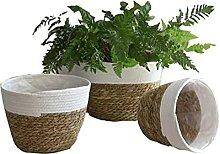 Atlnso 3 Stück Baumwollseil Pflanze Korb