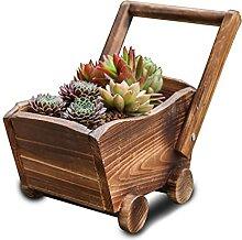 Atlnso Blumentopf aus Holz Wagenform Sukkulenten