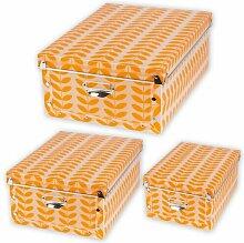 Aufbewahrungsbox Spizy aus Karton Rebrilliant