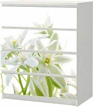 Aufkleber für IKEA Malm Kommode 80x100cm White