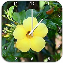 außergewöhnliche gelbe Blüte, Wanduhr