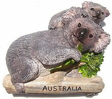 Australien Koala Bear OZ Nette Ozzie 3D Resin TOY Fridge Magnet Schiff frei