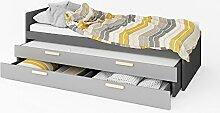 Ausziehbett Kinderbett Funktionsbett POK Mit Zwei Matratzen