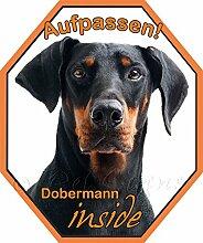 Auto Aufkleber Dobermann inside - Autosticker mit schwarzem Dobermann , 22 x 18,5