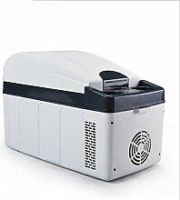 Auto Kühlschrank Elektro DC/AC Heiß Oder Kalt