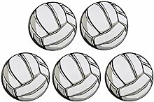 Auto Magnet Sport Athleten Volleyball Magnet