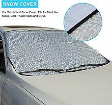 Auto Windschutzscheibe Schneedecke, Spiegel