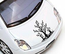 Autoaufkleber Baum Bäume Pflanze Äste Blätter