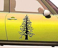 Autoaufkleber Baum Tannenbaum Bäume Pflanze Flora