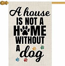 AVOIN A House is Not A Home Without A Dog