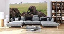 awallo Fototapete – Motiv «Elefantherde» in