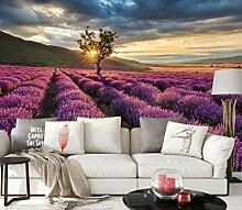 awallo Fototapete – Motiv «Lavendelfeld» in