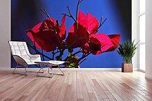 awallo Fototapete - Motiv «Pinke Pflanze» in