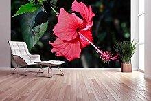 awallo Fototapete – Motiv «Rote Lilie» in