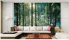 Ayzr 3D Fototapete Wald Schnee Tapetes Für