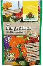 Azet DüngeSticks für Blühpflanze Blumen Stauden