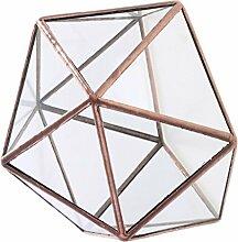 Backbayia Geometrisches Glasterrarium Glas