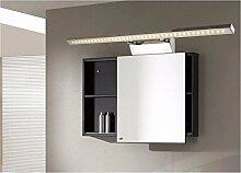 Bad Spiegel Lampe LisaFeng Einstellbare Winkel LED Edelstahl Körper, Moderne Wasserdichte Anti-Fog, 40cm
