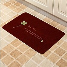 Badezimmer Matte/Absorption Von Wasser Nicht Sliping Matten/Toilette,Dusche,Badezimmer Matte/Veranda Fussmatte-P 40x60cm(16x24inch)