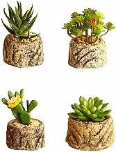 Badezimmer Wohnzimmer Dekoration?Mini-Pflanzen