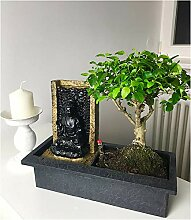 BALDUR-Garten Bonsai-Baum mit dekorativem