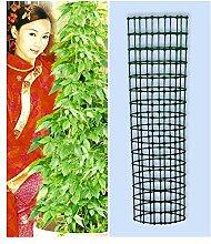BALDUR-Garten Jiaogulan & Dekorativer Rankturm,1 Se
