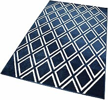 Balta Rugs Indoor-Teppich Blue Outlined Caros L