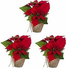 Bambelaa! 3 StückWeihnachtsstern künstlich
