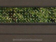 bambus-discount.com WPC Sichtschutz, Glas Streifen