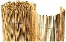 Bambusmatte Rio - Sichtschutzmatte günstig 100 x 500cm