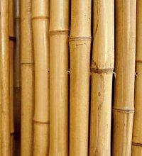 Bambusrohre zur Abstützung von Gemüse und für
