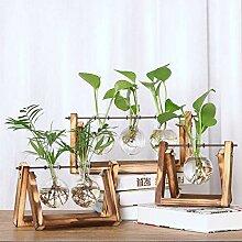 Banbie Desktop Glas Blumentopf Glühbirne Vase mit