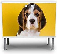 banjado - Badunterschrank 60x55x35cm Design Waschbeckenunterschrank mit Motiv Beagle