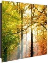 banjado Schlüsselkasten Motiv Herbstwald, 30 cm x