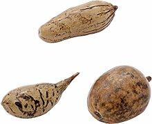 Baobab Affenbrotbaum Baum Früchte Außergewöhnliche Dekoideen Dekoration Afrika Deko Für Wohnzimmer Collection Dekoartikel Geschenke Basteln Poliert Afrikanische Kollektion (3)