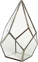 Baoblaze Glas klar Geometrische Terrarium