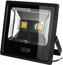 BAODE LED Fluter,LED Strahler 100W Kaltweiß Spotbeleuchtung Fluter Flutlicht Außen IP65 [Energieklasse A++]