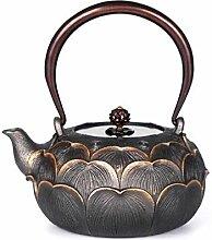 BAODI Gusseiserne Teekanne Eisenkessel mit