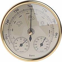 Barometer zur Wandmontage, mit Thermometer und