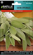 Batlle Kräutersamen- Salbei officinalis (Samen -