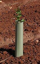 Baum Schutzdach 100Stück Standard grün 75cm Pflanze Schutz Guard Röhren