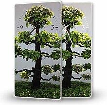 Baumi - Moderne Wanduhr mit Fotodruck auf Polycarbonat   Fotouhr Bilderuhr Motivuhr Küchenuhr modern hochwertig Quarz   Variante:30 cm x 60 cm mit schwarzen Zeigern