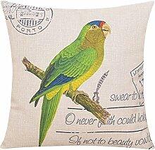 Baumwollkissen/Amerikanische Vogelkissen/Sofa/Büropolster/Gro?e pillowcase-C 60x60cm(24x24inch)VersionA