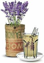 Baza - Seeds & Tea Garden - Pflanze: BIO Lavendel - Fertiger Zuchtbeutel mit Erde & Samen - Jutesack