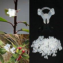 Bazaar Stäbe Clips Frucht Gemüse Veredelungszange der Garten Pflanze Semis Werkzeuge