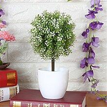 Beata.T Künstliche Blumen Set Grüne Pflanzen Kleine Töpfe Kreative Heimtextilien Mini-Ornamente, P