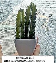 Beata.T Künstliche Blumen Set Kreative Frische Simulation Multi - Fleisch Vergossen Kaktus Bonsai Desktop Heimtextilien Simulation Vergossen Ornamente, K