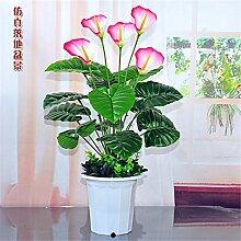 Beata.T Künstliche Blumen Set Kreative Schmetterlingsorchidee Vergossen Wohnzimmer Dekorationen Heimtextilien Juanhua Blumen, L
