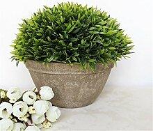 Beata.T Künstliche Blumen Set Simulation Pflanze Bonsai Monkey Gras Nelke Luo Han Gras Ananas Heimtextilien Ornamente, D