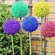 Beauty Garden Creative-Pflanze 100Pcs Riesenzwiebel Samen Allium Giganteum Blumensamen Staude Blumen Bonsai Pflanze DIY Hausgarten 14